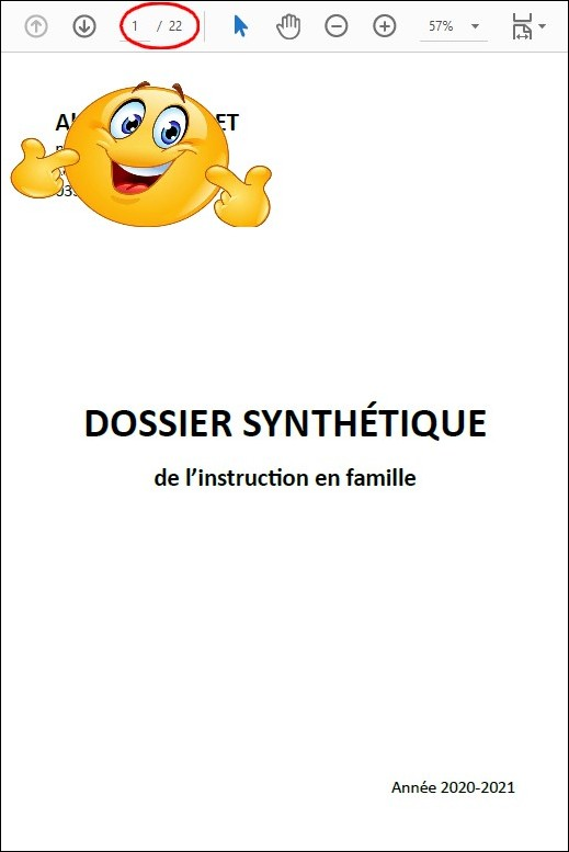 controle-ief-dossier-synthetique